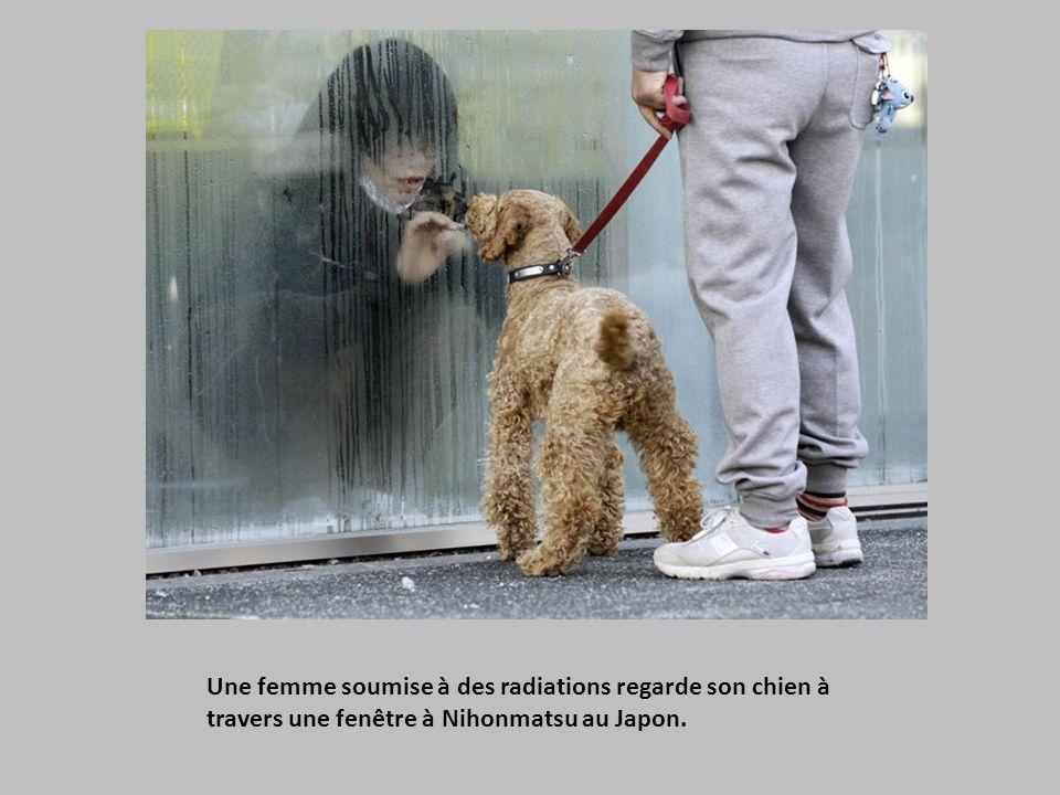 Une femme soumise à des radiations regarde son chien à travers une fenêtre à Nihonmatsu au Japon.