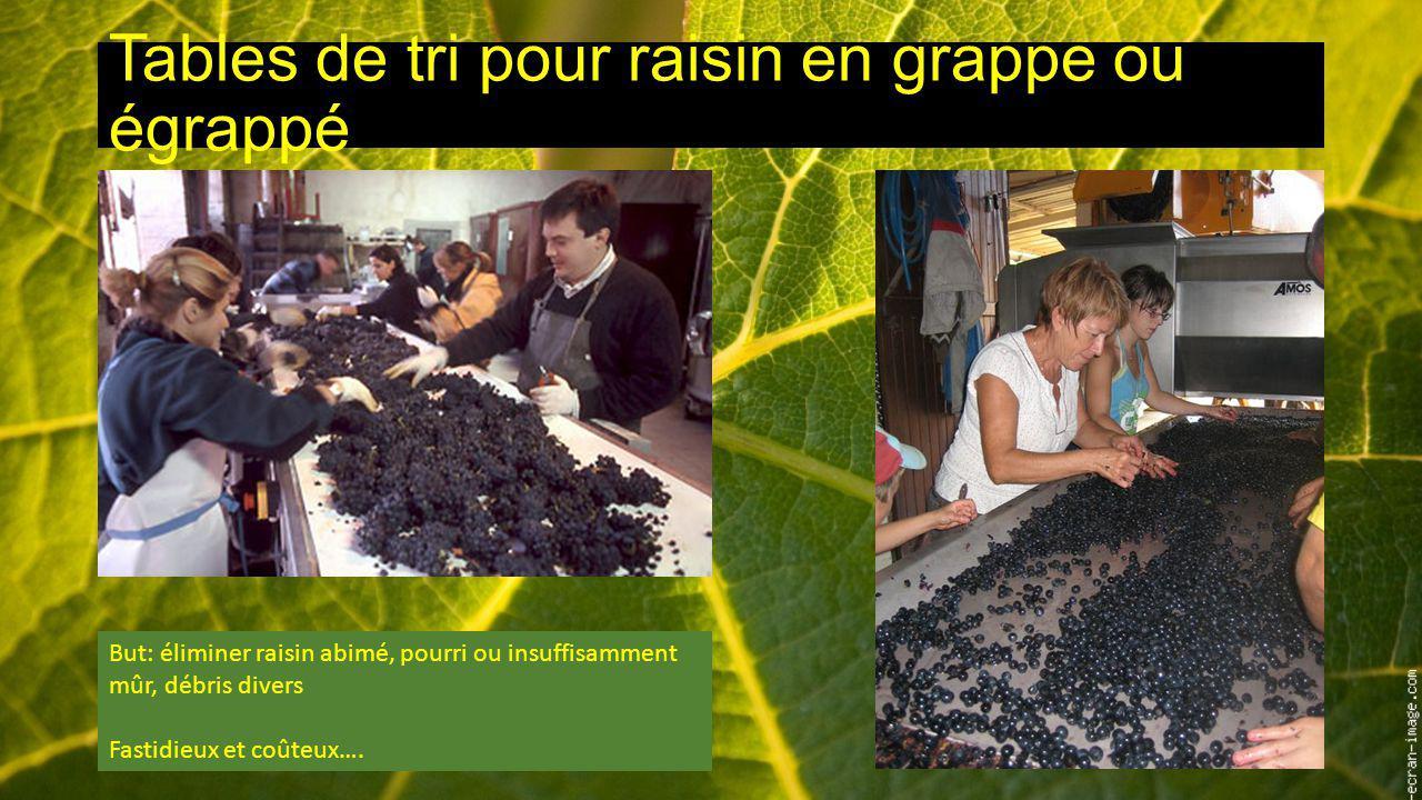 Tables de tri pour raisin en grappe ou égrappé