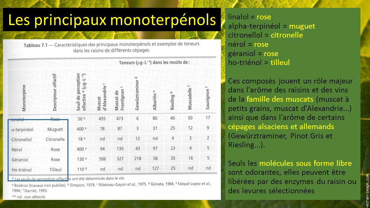 Les principaux monoterpénols