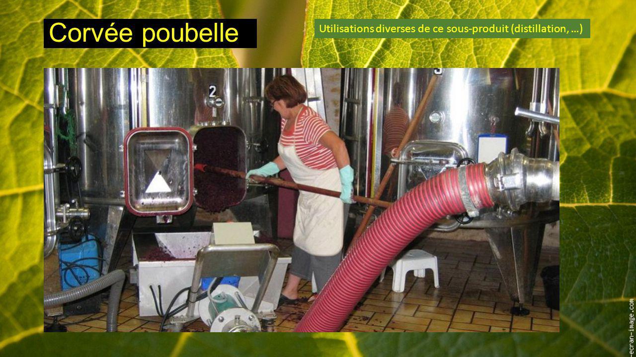 Corvée poubelle Utilisations diverses de ce sous-produit (distillation, …)