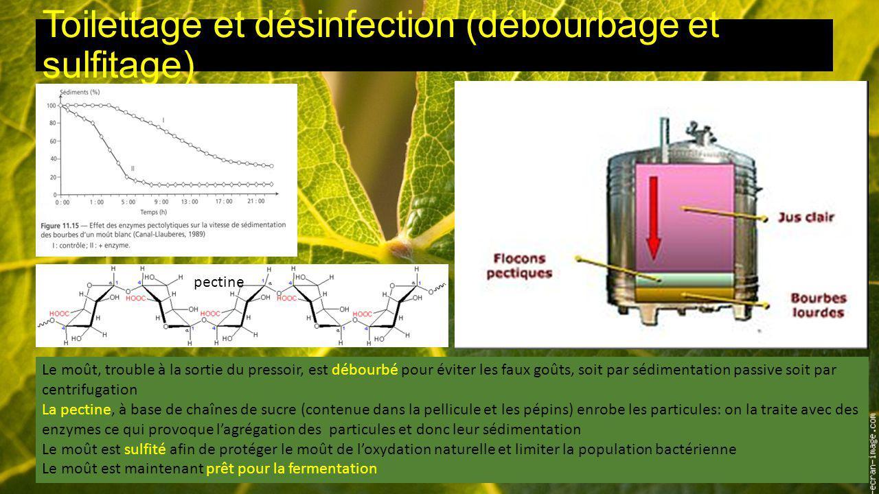Toilettage et désinfection (débourbage et sulfitage)