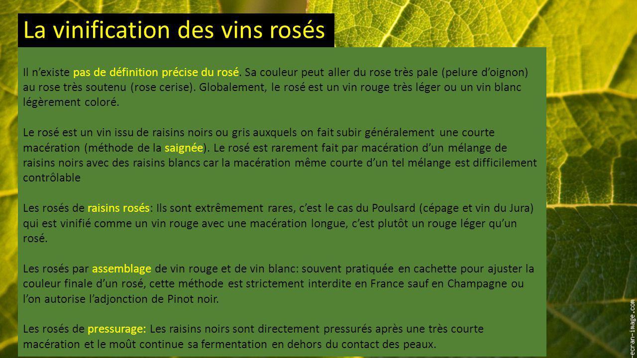 La vinification des vins rosés