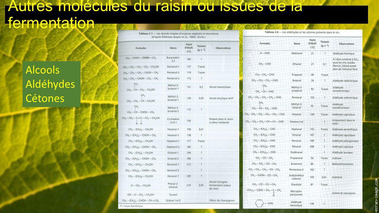 Autres molécules du raisin ou issues de la fermentation