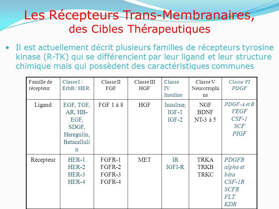 Les Récepteurs Trans-Membranaires,