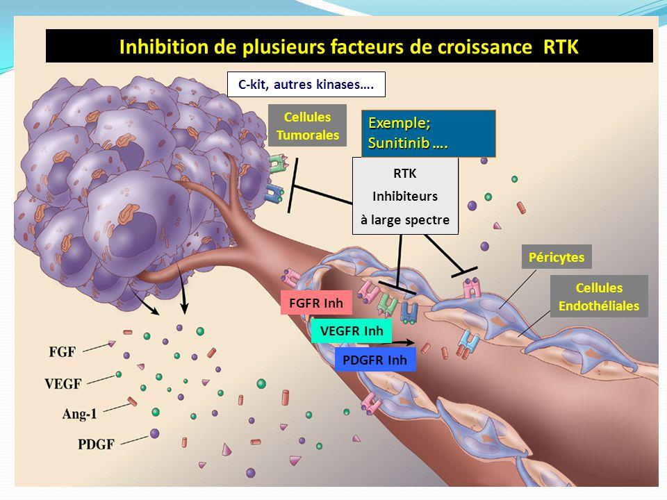 Inhibition de plusieurs facteurs de croissance RTK