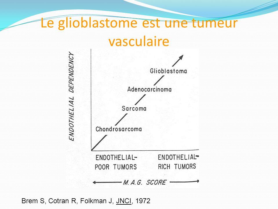 Le glioblastome est une tumeur vasculaire