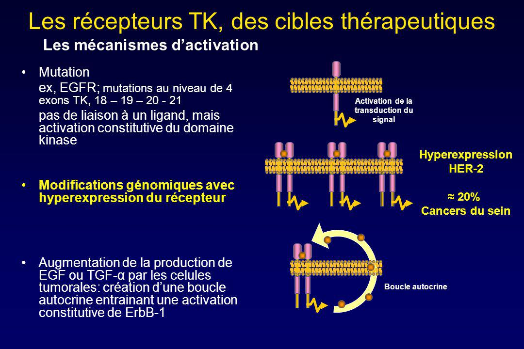 Activation de la transduction du signal