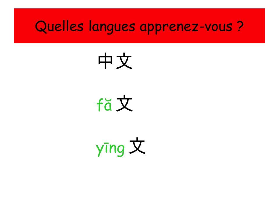Quelles langues apprenez-vous