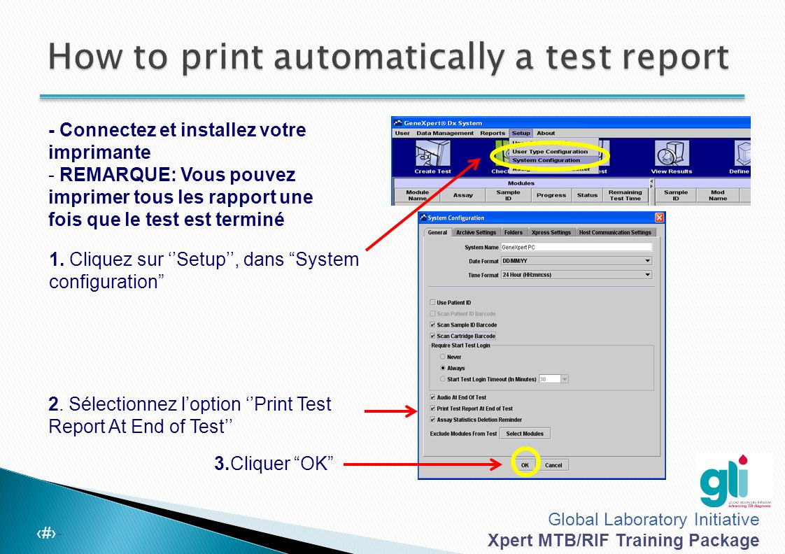 How to print automatically a test report