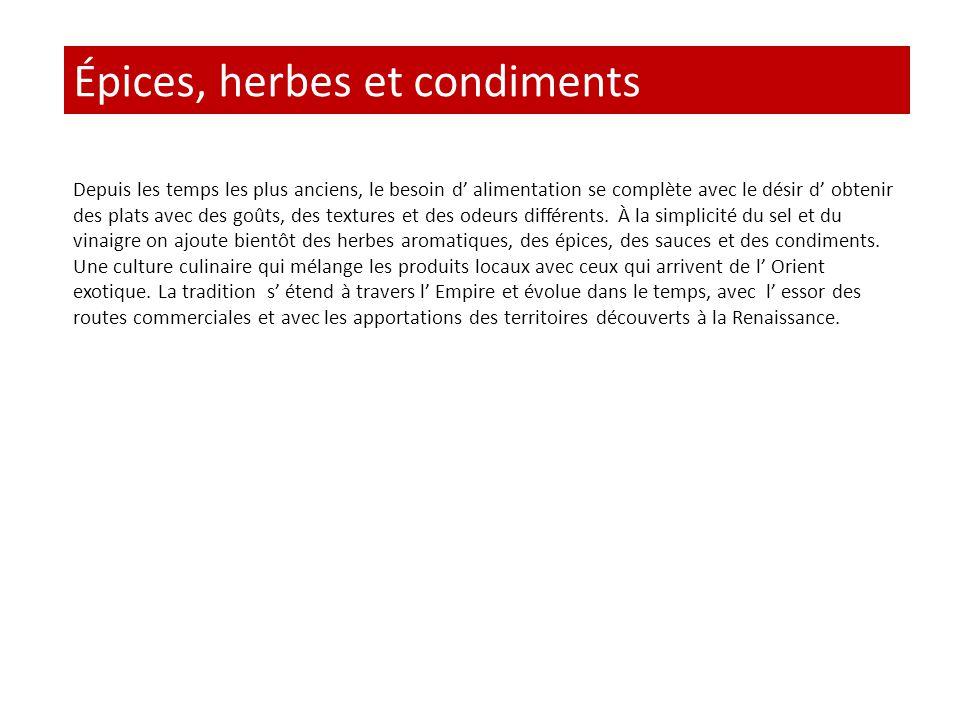 Épices, herbes et condiments