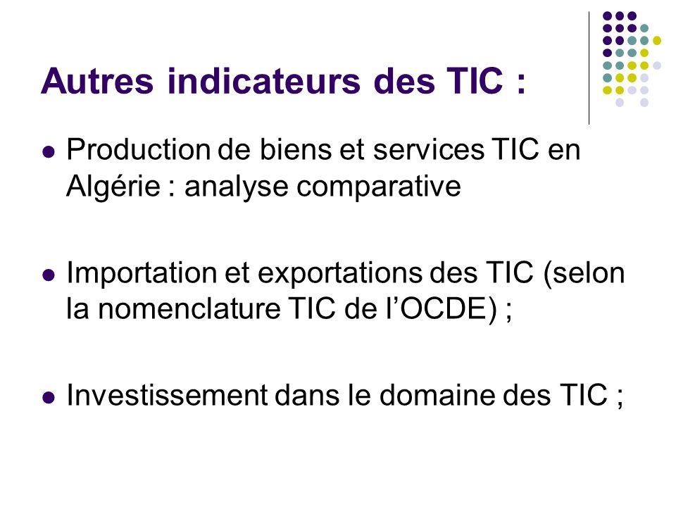 Autres indicateurs des TIC :