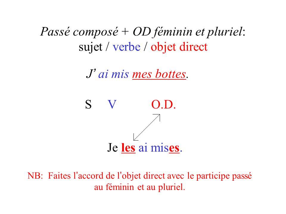 Passé composé + OD féminin et pluriel: sujet / verbe / objet direct