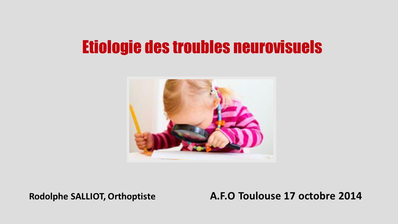 Rodolphe SALLIOT, Orthoptiste A.F.O Toulouse 17 octobre 2014