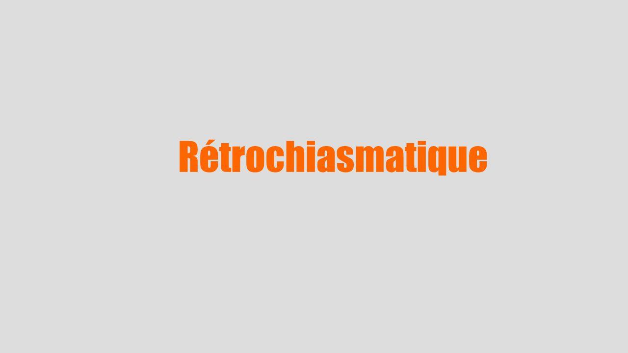 Rétrochiasmatique 37