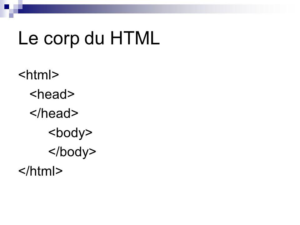 Le corp du HTML <html> <head> </head> <body>