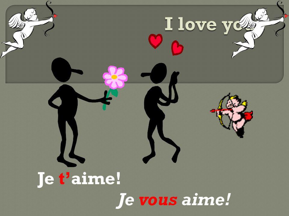 I love you! Je t'aime! Je vous aime!