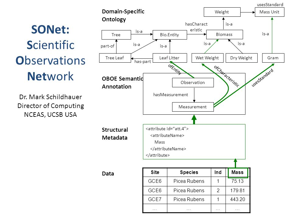 SONet: Scientific Observations Network