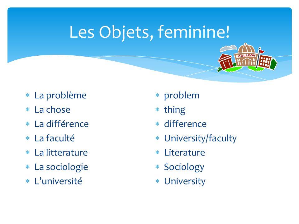 Les Objets, feminine! La problème La chose La différence La faculté