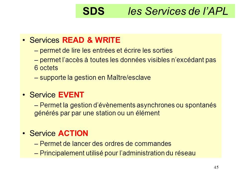 SDS les Services de l'APL