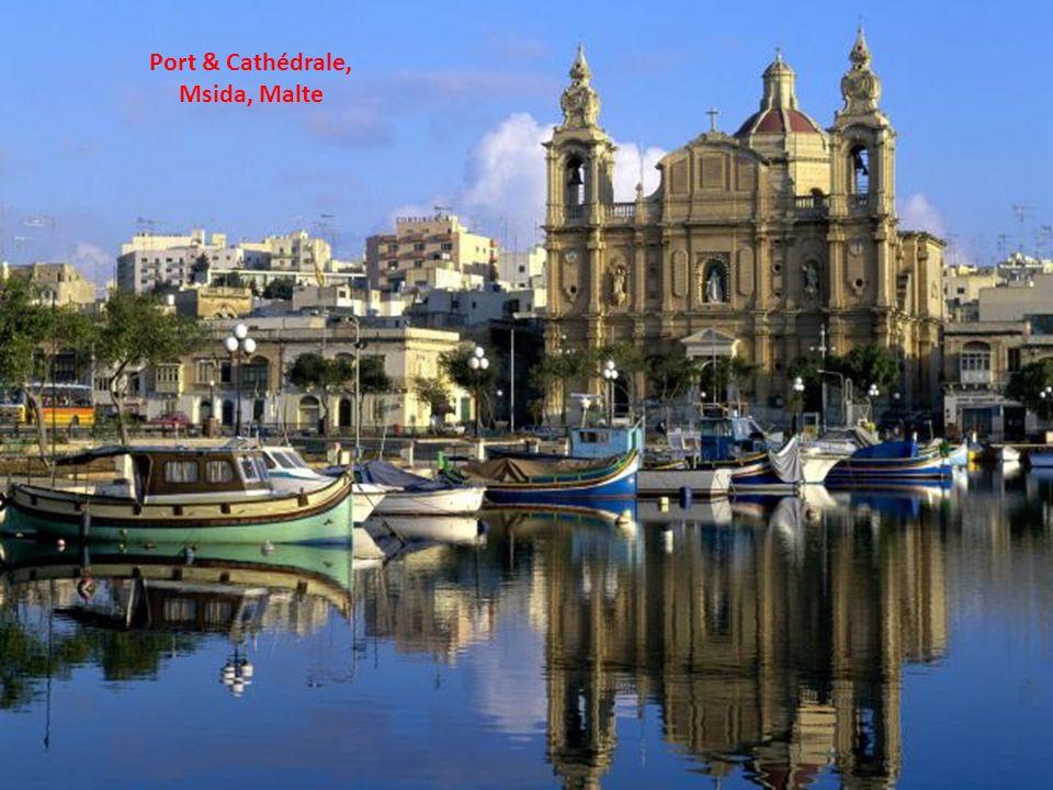 Port & Cathédrale, Msida, Malte