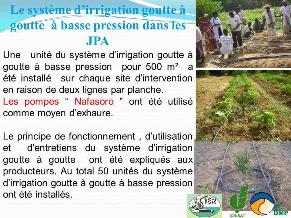 Le système d'irrigation goutte à goutte à basse pression dans les JPA
