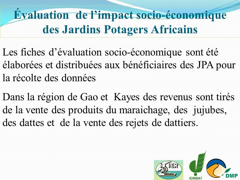 Évaluation de l'impact socio-économique des Jardins Potagers Africains
