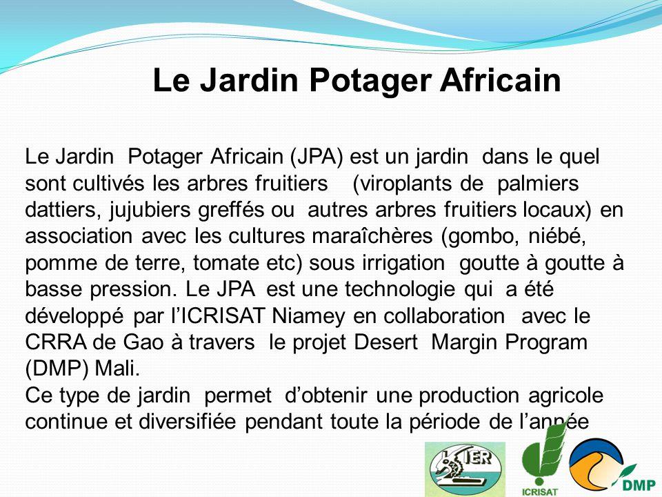 Le Jardin Potager Africain