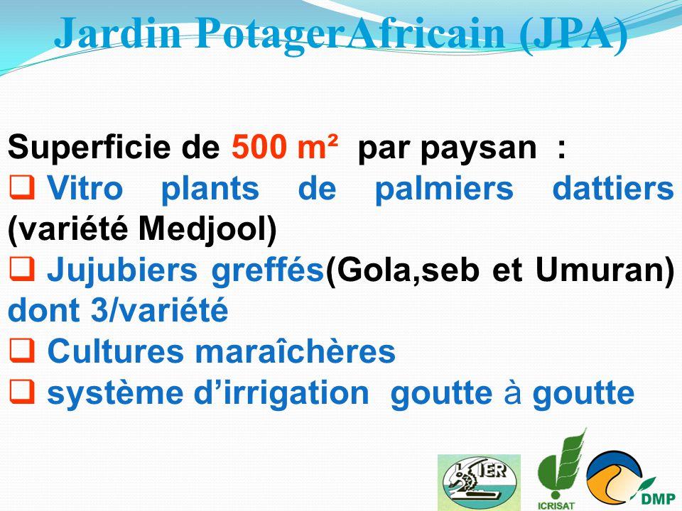 Jardin PotagerAfricain (JPA)