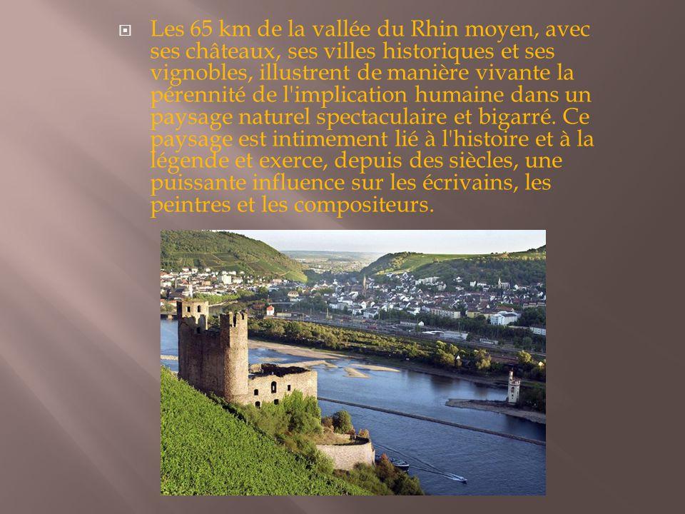 Les 65 km de la vallée du Rhin moyen, avec ses châteaux, ses villes historiques et ses vignobles, illustrent de manière vivante la pérennité de l implication humaine dans un paysage naturel spectaculaire et bigarré.