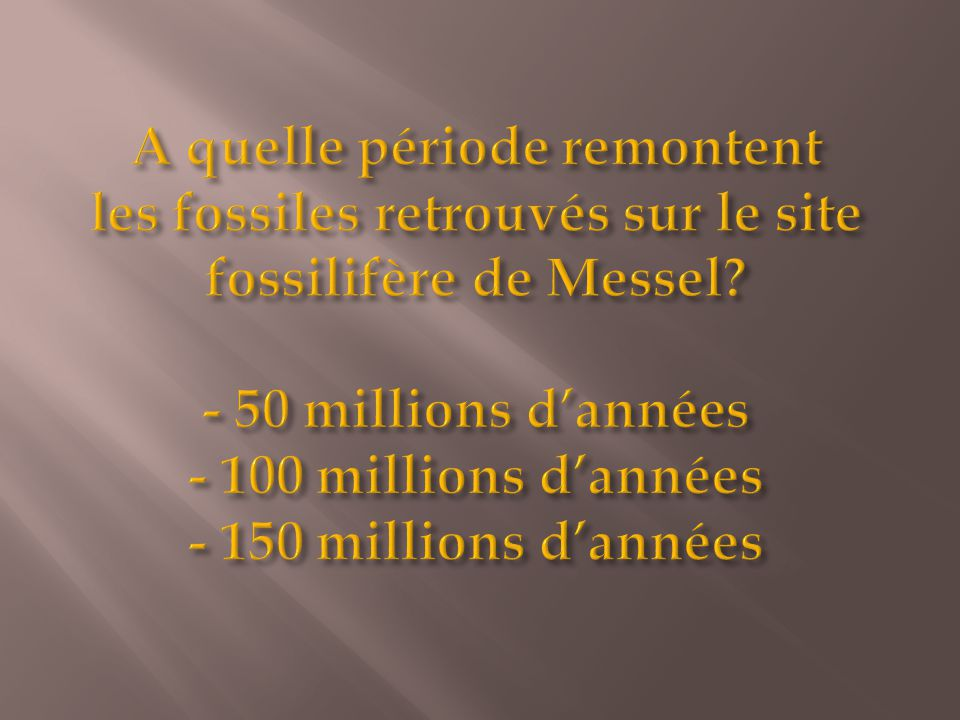 A quelle période remontent les fossiles retrouvés sur le site fossilifère de Messel.