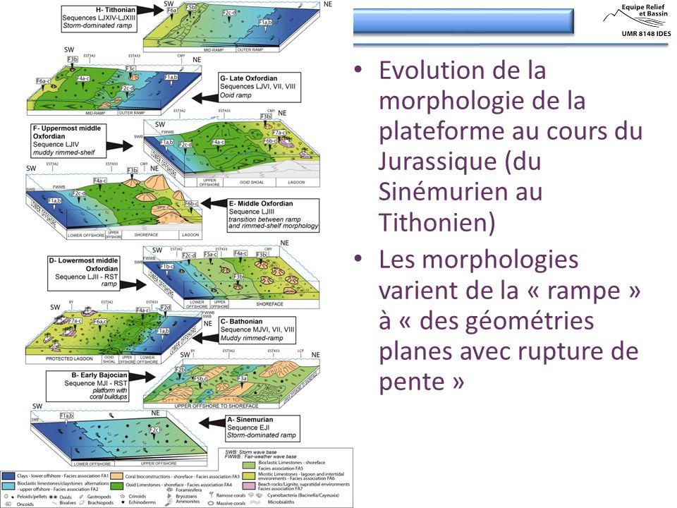 Evolution de la morphologie de la plateforme au cours du Jurassique (du Sinémurien au Tithonien)