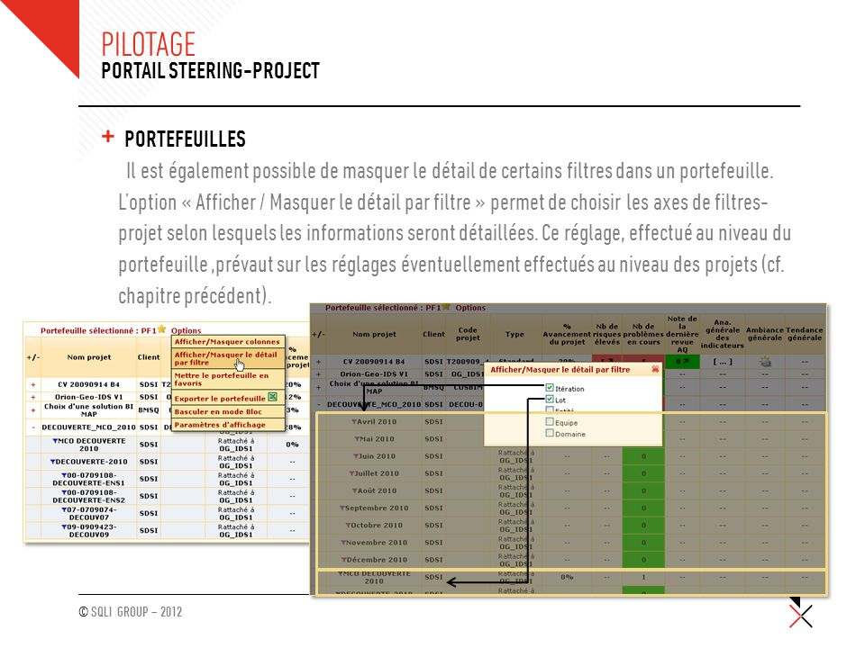 Pilotage Portail Steering-Project Portefeuilles
