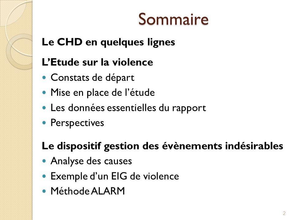 Sommaire Le CHD en quelques lignes L'Etude sur la violence