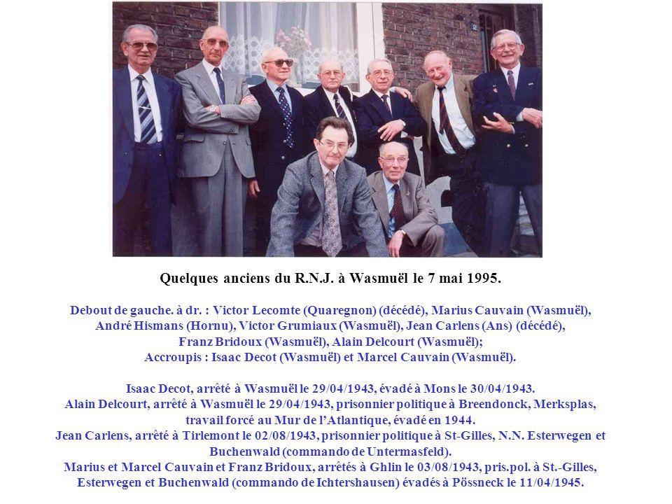 Quelques anciens du R. N. J. à Wasmuël le 7 mai 1995. Debout de gauche