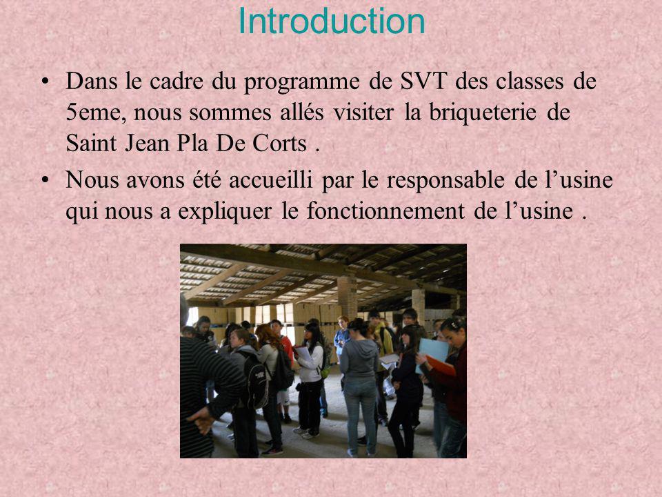 Introduction Dans le cadre du programme de SVT des classes de 5eme, nous sommes allés visiter la briqueterie de Saint Jean Pla De Corts .