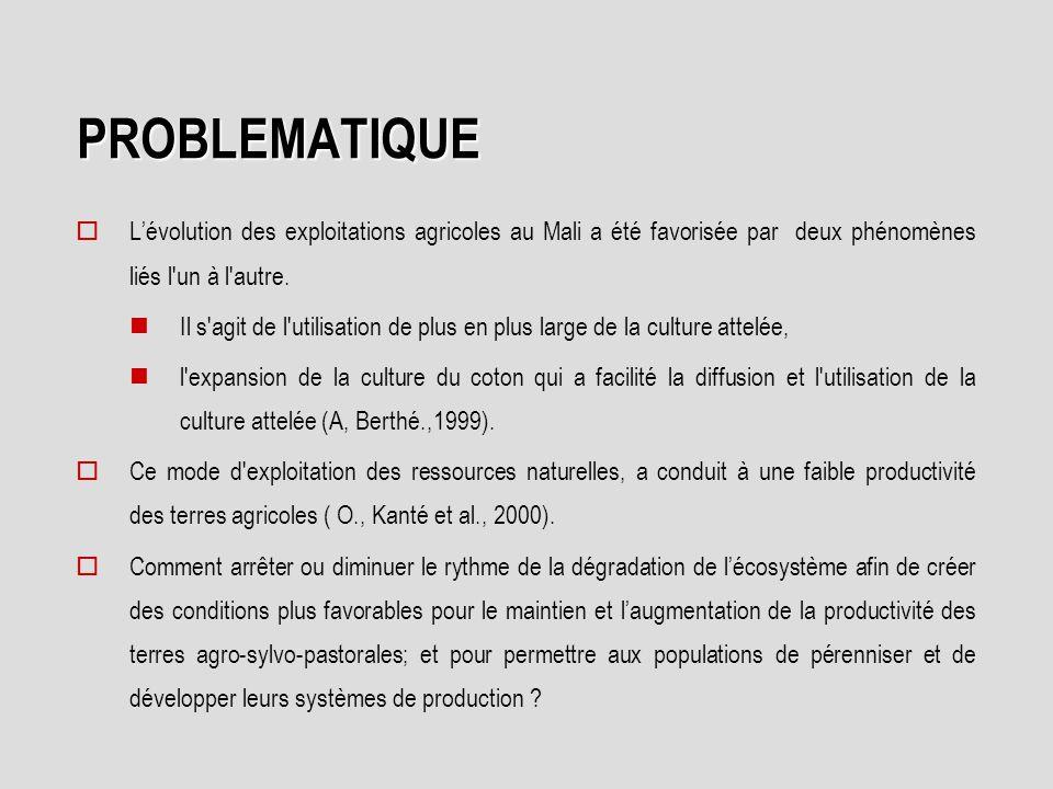 PROBLEMATIQUE L'évolution des exploitations agricoles au Mali a été favorisée par deux phénomènes liés l un à l autre.