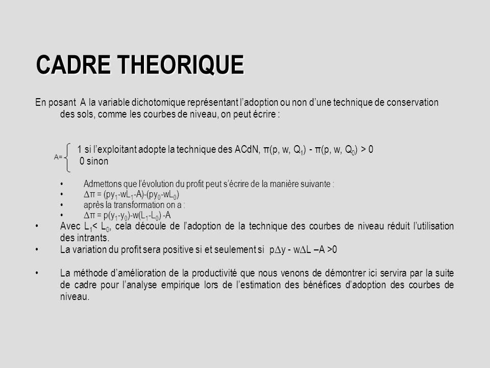 CADRE THEORIQUE
