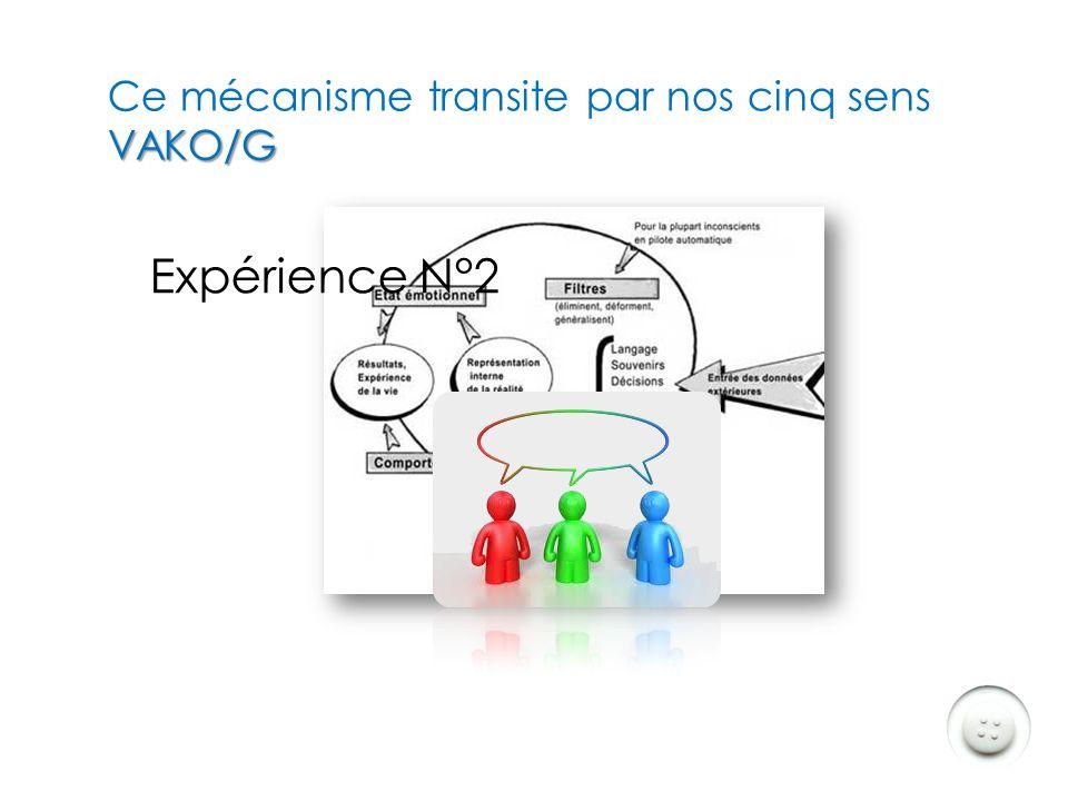 Ce mécanisme transite par nos cinq sens