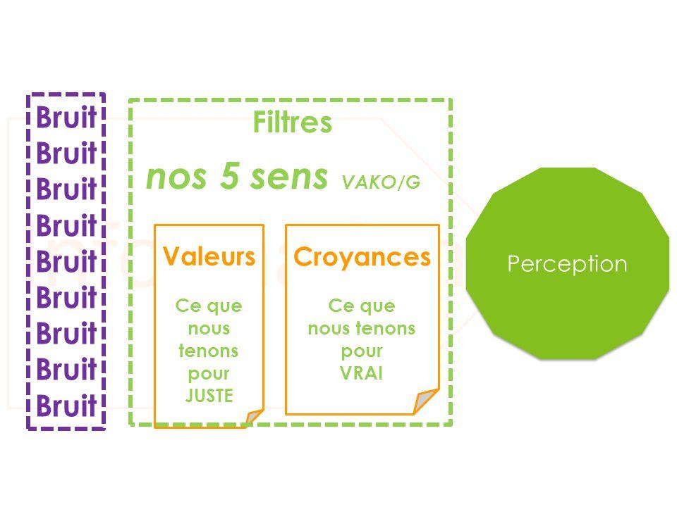 Informations nos 5 sens VAKO/G Bruit Filtres Valeurs Croyances