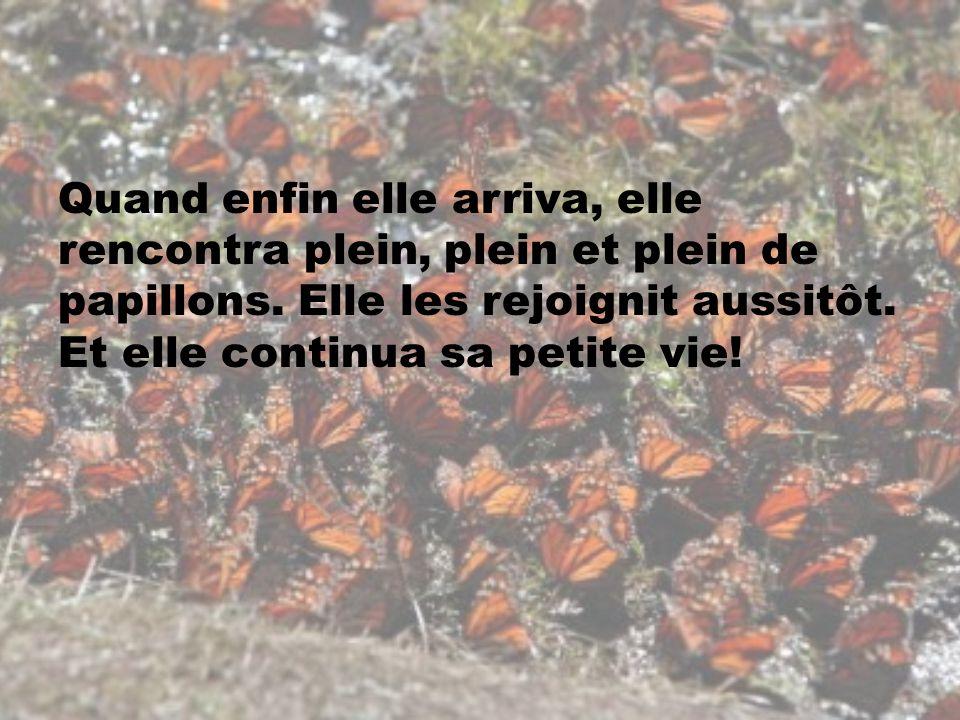 Quand enfin elle arriva, elle rencontra plein, plein et plein de papillons.
