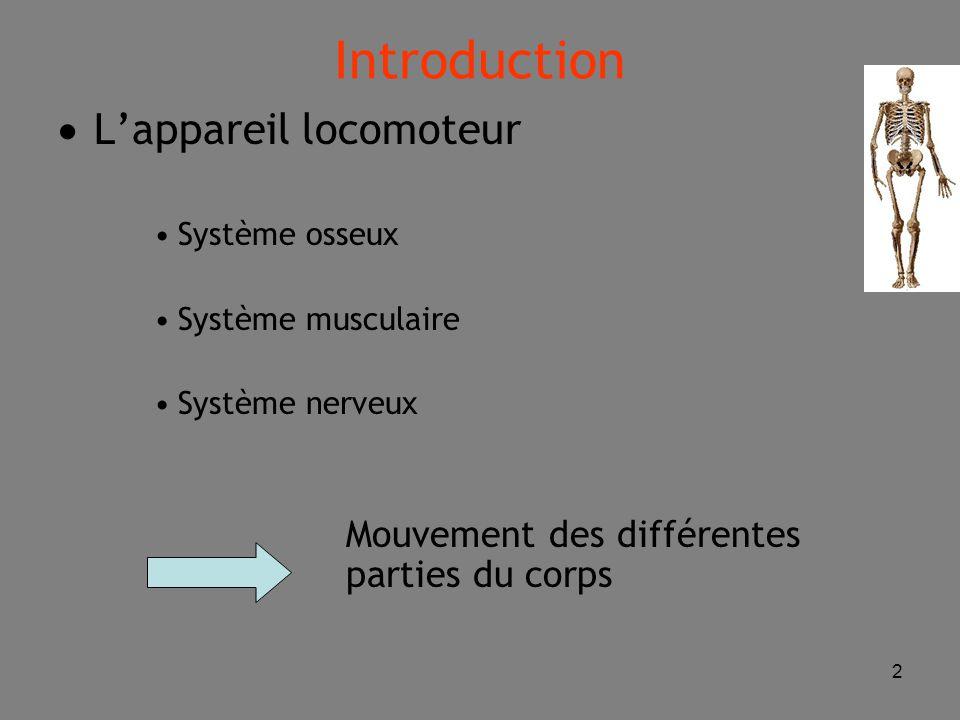 Introduction L'appareil locomoteur Système osseux Système musculaire