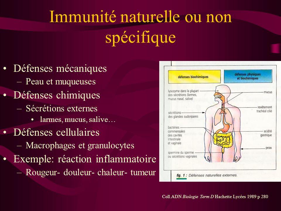 Immunité naturelle ou non spécifique