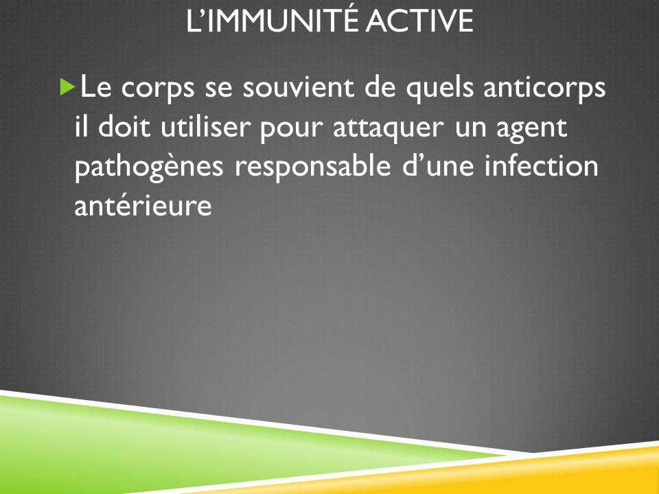 L'immunité active