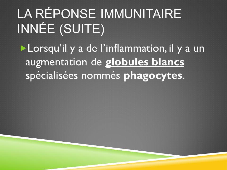 La réponse immunitaire innée (suite)