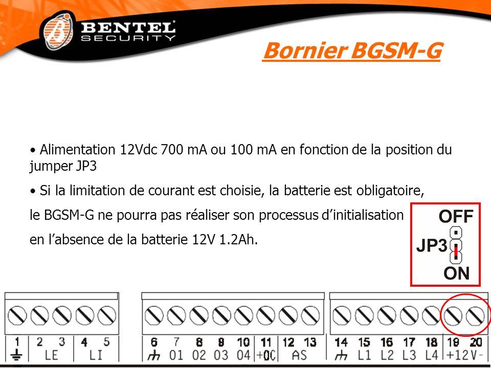 Bornier BGSM-G Alimentation 12Vdc 700 mA ou 100 mA en fonction de la position du jumper JP3.
