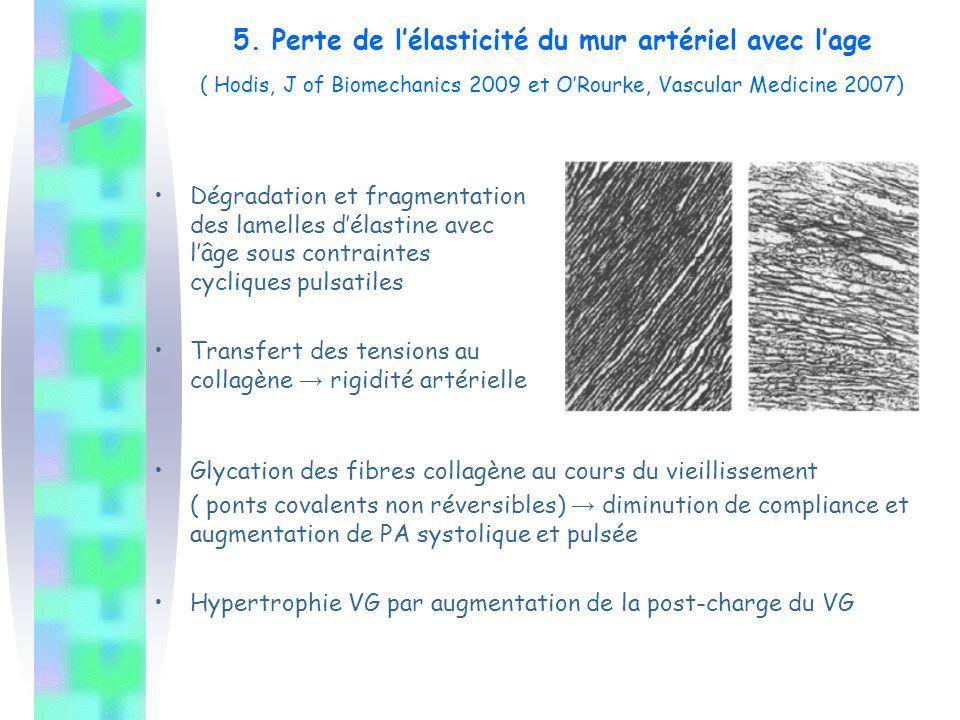 5. Perte de l'élasticité du mur artériel avec l'age ( Hodis, J of Biomechanics 2009 et O'Rourke, Vascular Medicine 2007)