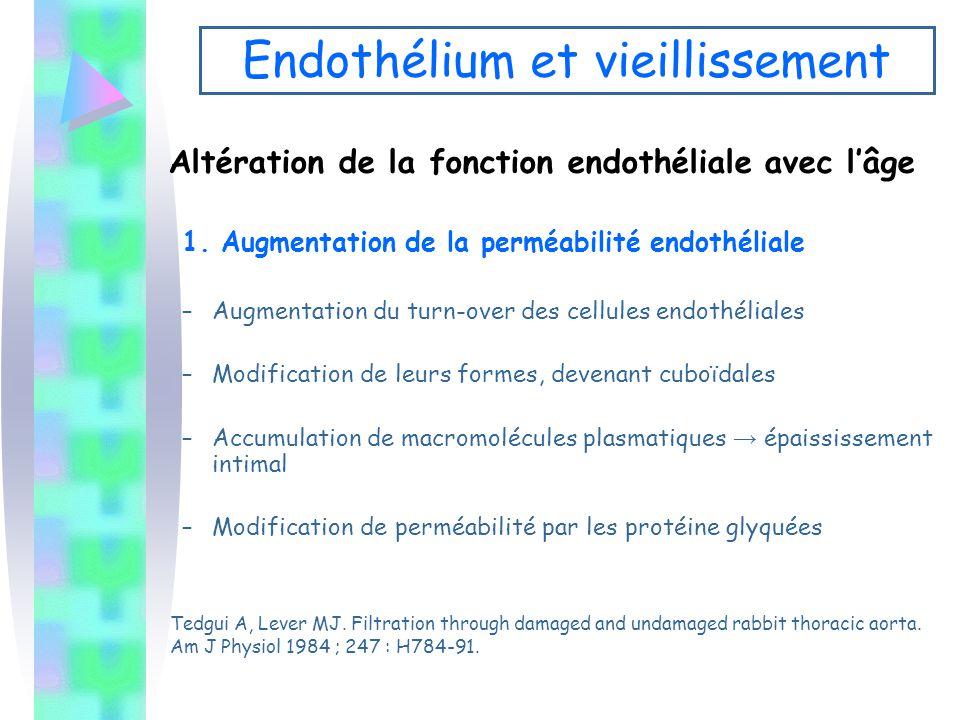 Altération de la fonction endothéliale avec l'âge