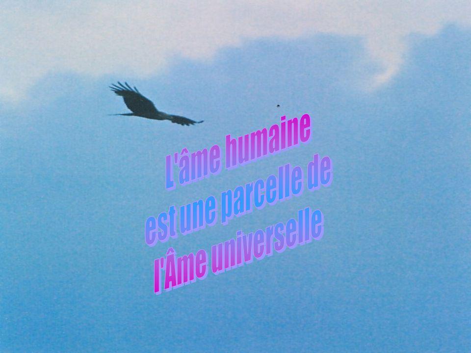 L âme humaine est une parcelle de l Âme universelle