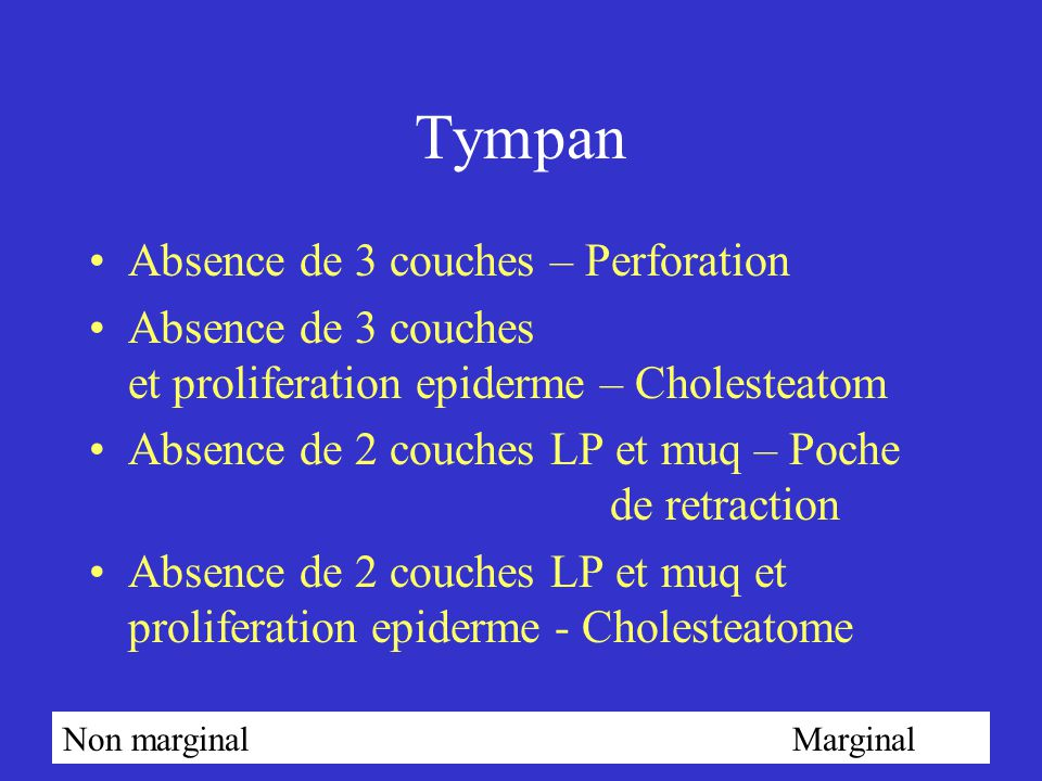 Tympan Absence de 3 couches – Perforation