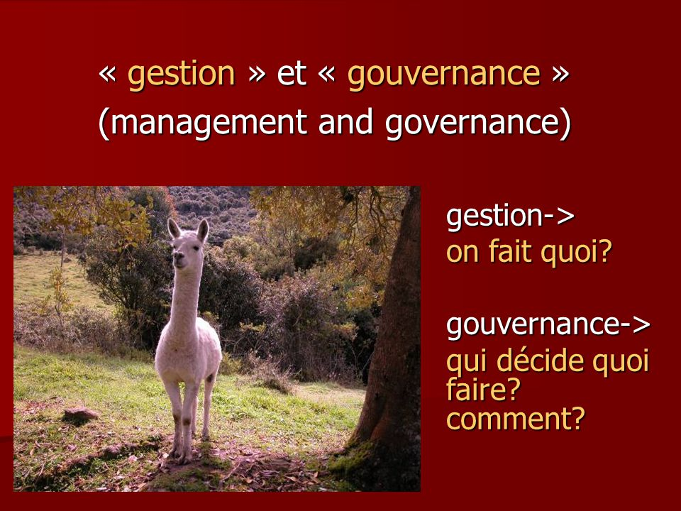 « gestion » et « gouvernance » (management and governance)
